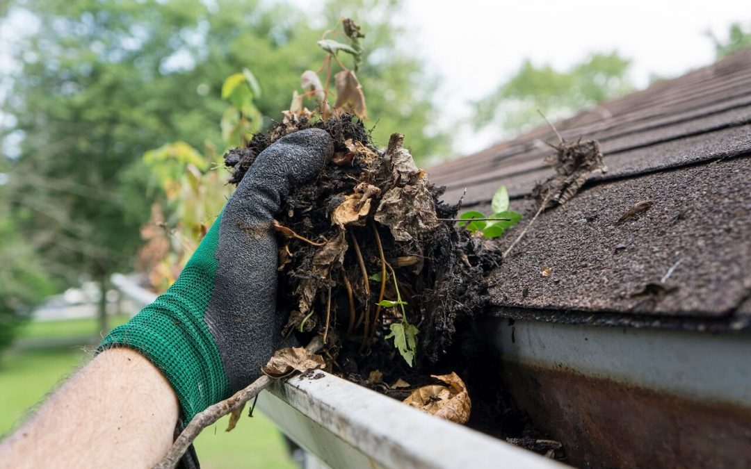 spring cleaning for your home's exterior includes cleaning the gutters