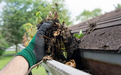 Spring Cleaning for Your Home's Exterior